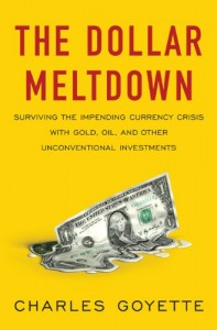 Dollar Meltdown Book