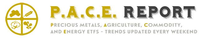 P.A.C.E. Report - PACE