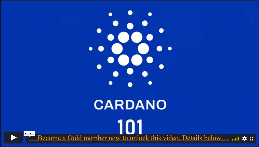 Cardano 101